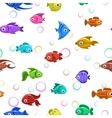 Seamless pattern with colorful fishes vector image vector image