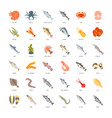 set flat icons of seafood vector image