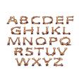 alphabet with bones vector image