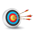 Archery Target with Arrows in the Bullseye vector image vector image