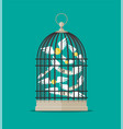 Bird cage with flying money vector image