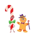 Christmas candy and gingerbread funny character vector image