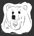 portrait of a bear t-shirt singlet bag print vector image
