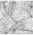 tropical leaves on a white background vector image vector image