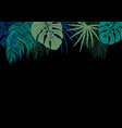 tropical leaves on black background vector image vector image