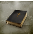 Bible old style vector image