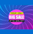 big sale banner template design vector image vector image