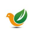 bird eco business logo vector image vector image