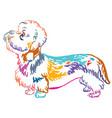 colorful decorative portrait of dog dandie vector image vector image