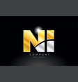 combination letter ni n i alphabet with gold vector image vector image