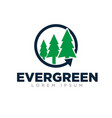 evergreen logo designs modern simple vector image vector image