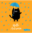 hello autumn black cat holding blue umbrella rain vector image