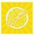 lemon drink background vector image