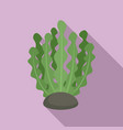 marine bio plant icon flat style