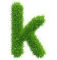 small grass letter k on white background vector image
