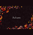 abstract colorful autumn leaves background