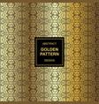 abstract golden pattern maya design vector image