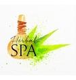Beauty natural spa herbal vector image