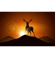 Deer on a Mountain vector image