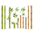 realistic bamboo green and brown bamboo stems vector image vector image