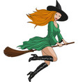 witch on a broomstick in halloween vector image vector image