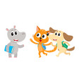 animal student characters hippo meeting cat dog vector image vector image