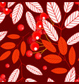 autumn seamless pattern with openwork ashberry vector image vector image
