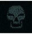 code texture smiled skull vector image vector image