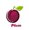 Fresh plum fruit in cartoon style vector image vector image