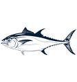 graphic tuna vector image vector image