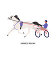 harness racing flat male vector image