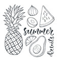 pineapple and sliced fruits food for print design vector image