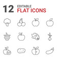 ripe icons vector image vector image