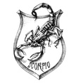 Scorpion heraldry scorpio zodiacal sign vector image vector image