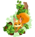 squirrel on a tree with nuts vector image