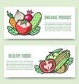 vegetables organic food banner set veggie vector image