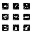 Veterinary things icons set grunge style vector image vector image
