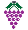 Pixelated grapes vector image