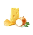 Potato Ripple Chips with Cheese Onion Close up vector image vector image