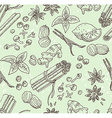 spice seamless hand-drawn background vector image vector image