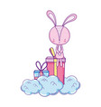 cute little rabbit with giftbox character vector image vector image