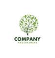fresh tree healthy logo vector image vector image