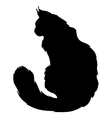 furry cat silhouette vector image vector image