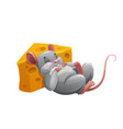 mouse sleeping on cheese cartoon character vector image