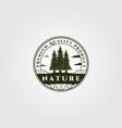 pine tree emblem design vintage spruce badge vector image vector image