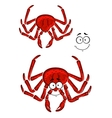 Red marine crab with a happy smile vector image