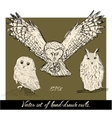 Set of isolated hand-drawn owls 1 vector image