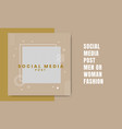 social media post men or woman fashion background vector image vector image