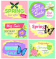 big spring sale collection vector image vector image