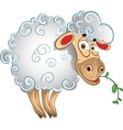 Bright sheep with blade of grass vector image vector image